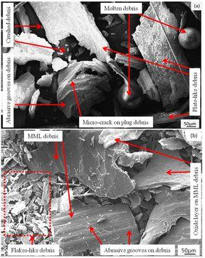 Worn debris of the composites with 5wt.% (a) coarse and (b) fine garnet particle reinforced at 49N load.