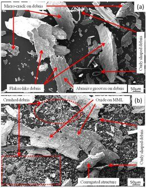 Worn debris of the composites with 10wt.% (a) coarse and (b) fine garnet particle reinforced at 49N load.