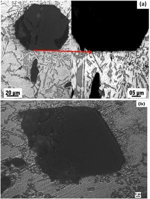 The optical micrograph at higher magnification of composites with 15wt.% (a) coarse (black) and (b) fine particles reinforced.