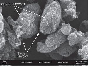 SEM image of as-received MWCNT.