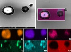 SEM–EDS analysis of inclusions in the 1B DSS annealed.