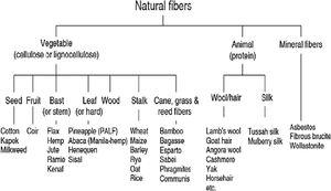 Classification of natural fibres (from Akil et al. [16]).