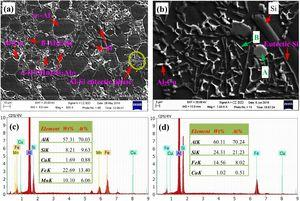 SEM morphologies of Rheo-HPDC AC46000 alloy at (a) low and (b) high magnifications; EDS analysis results at points (c) A and (d) B in (b).
