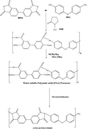 General synthesis route for linear polyimide aerogels.