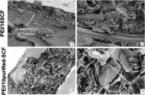 SEM micrographs of the surface fracture of PEI films loaded with 10wt.% of SCF before and after purification.