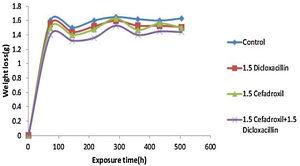 Variation of weight loss by the inhibited and uninhibited samples.