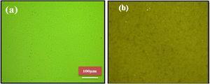 Optical microscopy image of (a) CuI and (b) CuI–MBT.