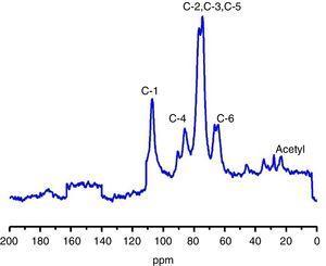 C13 (CP-MAS) NMR spectroscopy analysis.