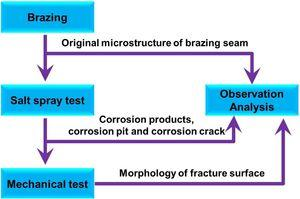 Schematic diagram of experimental procedure.