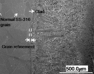 Microstructure of EWAC microwave cladded cross-section (Reprinted from Surface and Coatings Technology, 205 /21-22, Dheeraj Gupta, A.K. Sharma, Development and microstructural characterization of microwave cladding on austenitic stainless steel, 5147-5155, 2011, with permission from Elsevier.) [33].