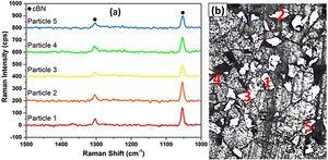 (a) Raman spectra acquired from (b) five cBN particles (labelled 1–5) located within the wear track zone of the alumina/30 wt.% cBN sample (S4). Characteristics peaks of the cBN phase were observed in these spectra.