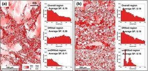 Schmid factor (SF) maps for basal slip under tension along ED and SF distributions in overall, DRXed, and unDRXed regions of AZXW8000 alloys extruded at (a) 250°C and (b) 350°C.