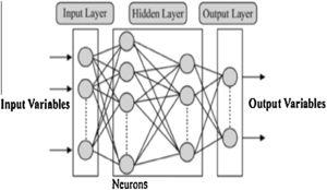 Typical Feed forward neural network schematic representation.
