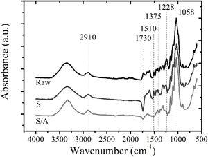 FT-IR spectra of the untreated, steam exploded (S), and combined steam explosion and chemical-treated (S/A) fibers isolated from bamboo culms.