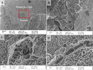 SEM fractographs of F60 CTOD specimens showing the fracture surface macrography (A) and (B) and spherical and elongated formats inclusions (C) and (D).