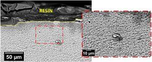 SEM images of the SZ in the AA2098-T351 alloy welded by FSW and exposed for 48h to EXCO solution.