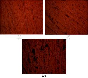 Optical image of AA1060/SiC before corrosion (mag. 40×) (a) 0μm, (b) 3μm and (c) 45μm.