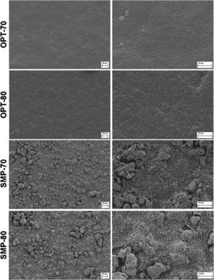 FE-SEM micrographs of the plane view surfaces of OPT-70, OPT-80, SMP-70 and SMP-80 systems.