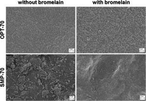 FE-SEM micrographs of the plane view surfaces of OPT-70 and SMP-70 systems before and after bromelain immobilization.