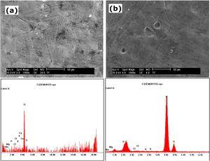 SEM morphologies and EDS spectra of the surfaces of Ti10Nb10Zr samples: (a) 7 and (b) 15 days immersion in SBF.