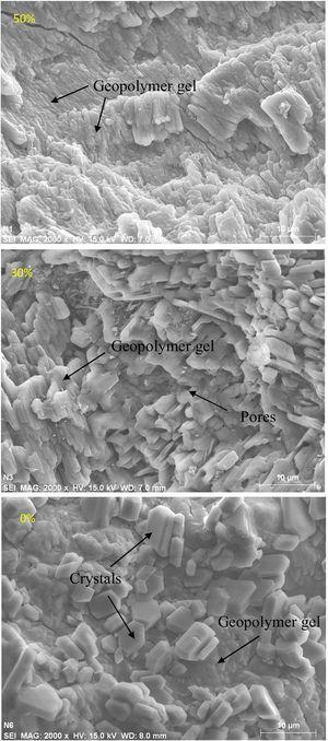 SEM images of geopolymers synthesized with different content of metakaolin.