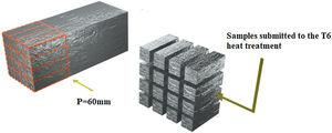 Schematic representation of the as-cast ingot and samples submitted to the T6 heat treatment.