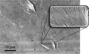 The shearing deformation occurring on friction film.