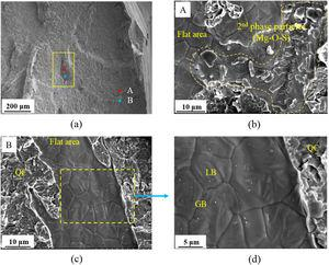 Surface morphology observation of the crack nucleation sites appearing as a flat area in (a) low magnification image, (b) area showing 2nd phase particle cluster, (c) area showing traces of grain/lath boundary, and (d) magnified view of the boxed area in (c).