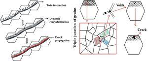 Schematic illustration of (a) nucleation of twinning induced crack (b) secondary cracks formation in ZK61 Mg alloy.