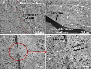 OM analysis of fractured specimens of ZK61 Mg alloy (a) formation of ASB at a strain rate of 2000s−1 (b) big crack at the boundary of coarse grain and recrystallized grains at a strain rate of 3000s−1 (c) low magnification of the crack at a strain of 3000s−1 (d) magnified the view of the cracks at a strain rate of 3000s−1.