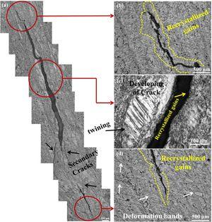 OM micrographs in ZK61 Mg alloy at strain rate of 2000 s−1. (a) Montage of crack and its propagation, (b) upper tip of crack (c) center of the crack (d) lower tip of the crack.