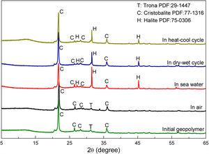 XRD patterns of the geopolymers cured differently for 90 days.