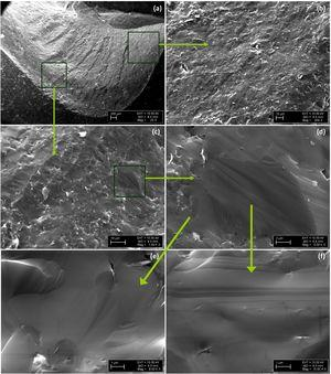SEM images of fractured surface of B4C compacts (sample 3, Tsintering=1900°C).