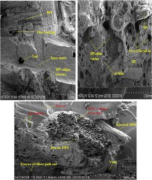 SEM images of tensile fractured sample of 40% DPF/epoxy composites.