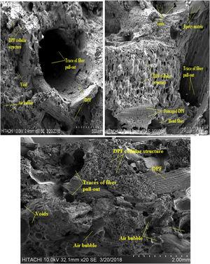 SEM images of tensile fractured sample of 60% DPF/epoxy composites.