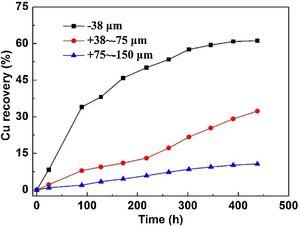 Effects of particle size on Cu extraction at 328 K (0.1 M NaCl).