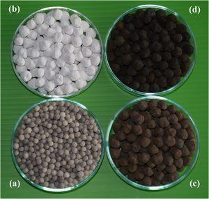 A photograph of the samples. (a) porous silica beads, (b) hydrated CAC/SiO2 granules, (c) dried Ag2O-Ag/CAC/SiO2 composite granules (45°C/12h), and (d) calcined Ag2O-Ag/CAC/SiO2 composite granules (200°C/1h).