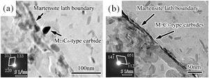 TEM micrographs of precipitates formed at boundaries in specimen S1-6.