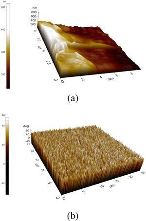Surface morphology of Zn doped α-Fe2O3 Layer 5 at 450°C near to the Edge (a) and middle of the surface (b).