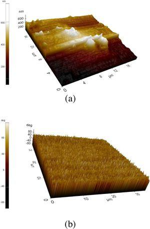 Surface morphology of Zn doped α-Fe2O3 Layer -5 at 550°C near to the Edge (a) and middle 0f the surface (b).