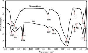 Fourier-Transform Infrared Spectroscopy of montmorilloite and HM.