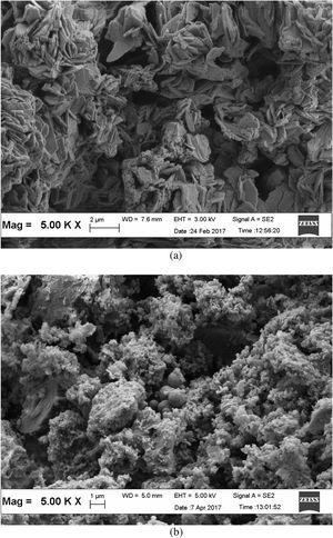 Scanning electron micrographs of (a) DSA and (b) CuO/DSA derived nanocomposite.