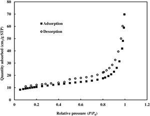 Nitrogen adsorption-desorption curve of CuO/DSA derived nanocomposite.