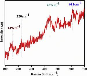 Raman spectra of Bi and Fe substituted LaCoO3 perovskites.