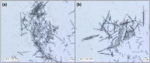 (a, b) SEM image of pure NQ flake compacted under the pressure of 0.1MPa (0.1 NQ).