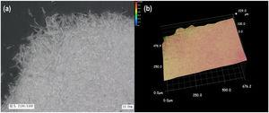 (a) SEM and (b) 3D image of pure NQ flake compacted under the pressure of 3MPa (3 NQ).