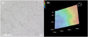 (a) SEM and (b) 3D image of pure NQ flake compacted under the pressure of 5MPa (5 NQ).