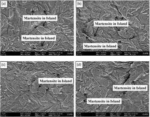 Microcracks generation and morphology of the microcracks in WQ810 at 1890 N.