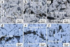 Microscopic damage characteristics around main fatigue crack at Δεt/2 of 0.2% and different temperatures after fracture: (a) AC-280 °C (N = 2246); (b) AC-350 °C (N = 13,501); (c) AC-425 °C (N = 6943); (d) UT-280 °C (N = 13,915); (e) UT-350 °C (N = 17,282); (f) UT-425 °C (N = 15,966).