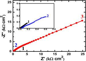 Nyquist plots of (1) Ti–5%Al–5%Cu, (2) Ti–5%Al–10%Cu, and (3) Ti–5%Al–20%Cu alloys after 1h immersion in 3.5% NaCl solutions, respectively.